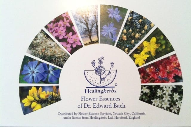 Flower Essence Therapy