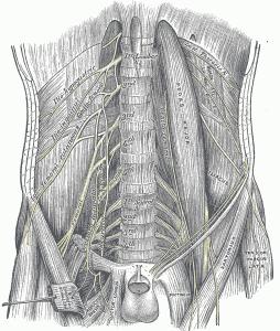 Rib Thrusting and Knee Pain