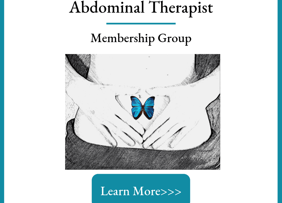 Alignment Monkey-Reproductive & Digestive Health-Abdominal Therapies